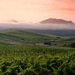 Ätna und Wein Tour