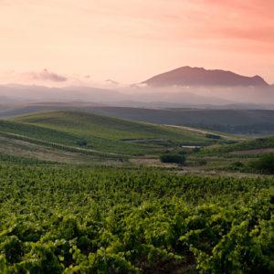 Etna und Wein Tour