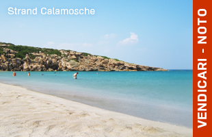 05_vendicari_calamosche
