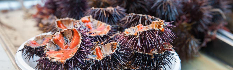 Catania Fish Markt